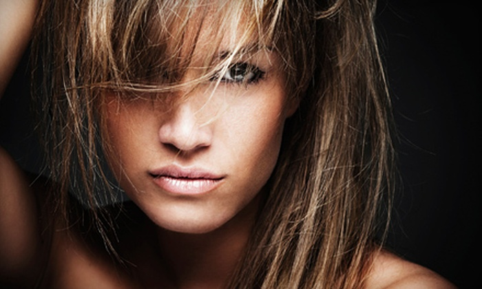 Amy at Expressions Hair & Nail Salon - Ozark: Haircut Packages with Deep Conditioning and Partial or Full Highlights from Amy at Expressions Hair & Nail Salon in Ozark (Up to 65% Off). Three Options Available.