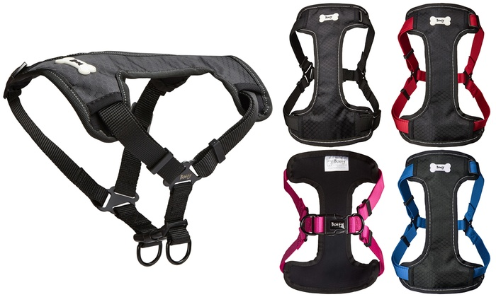 Groupon Goods Global GmbH: Bunty Strap 'N' Strole Harness