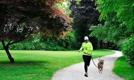 """Cinturón """"manos libres"""" para correr con mi perro por 7,99 € (74% de descuento)"""