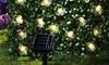 LED Solar Blossom String Lights