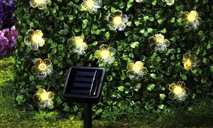 Guirlandes de lampes à fleurs solaires à LED