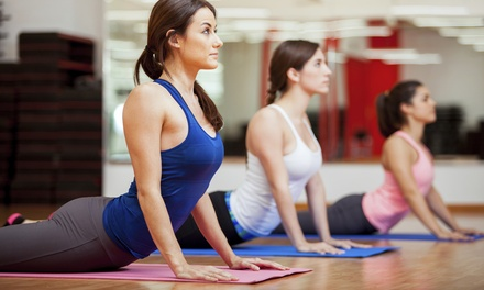 One Month of Unlimited Yoga or Reformers Pilates Classes $17 at YYoga Up to $220 Value