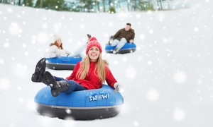 Snow Day LA: Admission, Snow Tubing, and VIP Lounge Access at Snow Day LA (Up to 33% Off). Six Options Available.