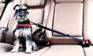Une ou deux ceintures de sécurité pour animaux