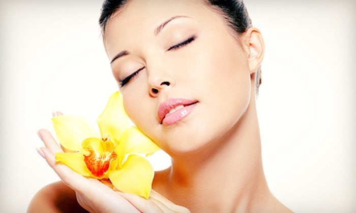Facelift of the Stars - Cottonwood Heights: $49 for a Six-Month Facelift of the Stars Membership and Facial from Facelift of the Stars ($348.50 Value)