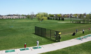 Wedges 'N Woods: Driving-Range Balls at Wedges 'N Woods (Up to 41% Off)
