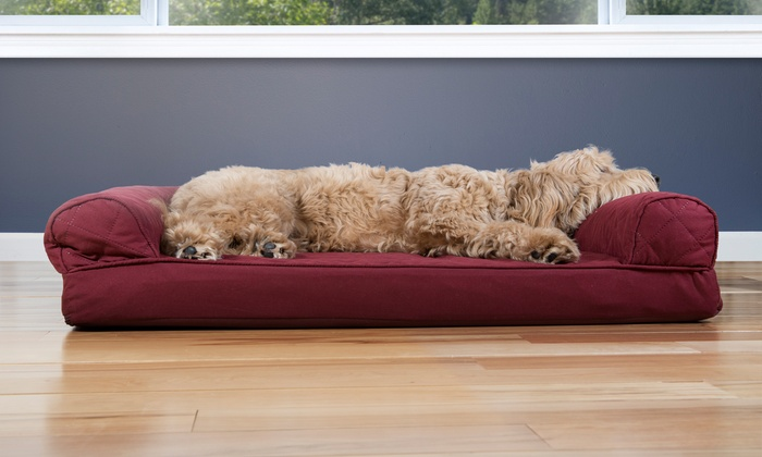 Fabulous Up To 81 Off On Sofa Style Orthopedic Pet Bed Groupon Goods Bralicious Painted Fabric Chair Ideas Braliciousco