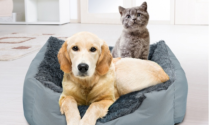 BDirect: $29 for a 4Paws Ultra Luxe Large Pet Bed (Don't pay $129)