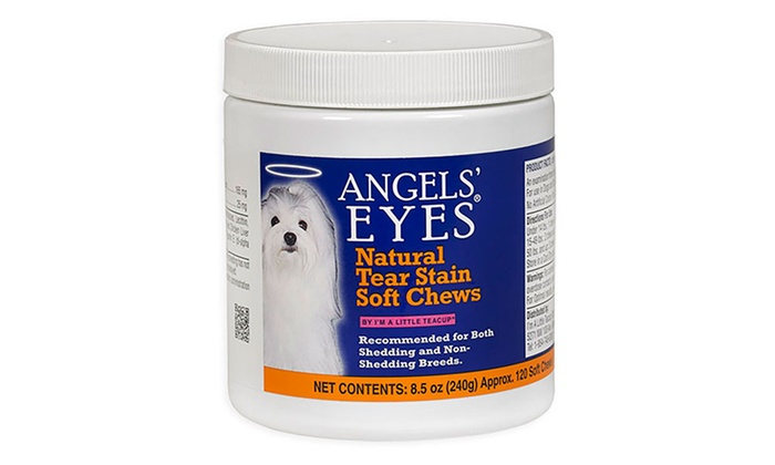 Angel eyes dog product-4840