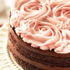 Chocolate Cake or Seafood and Entrees — Up to 42% Off