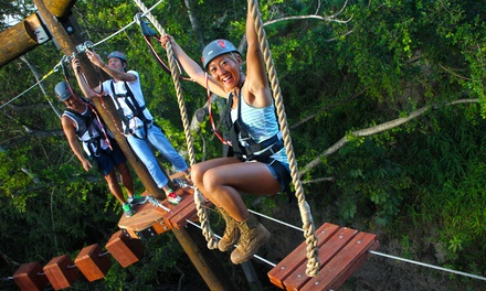 $87.99 for Three-Hour Adventure Tower Package for One at Coral Crater Adventure Park