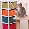 Eco-Friendly Cat Furniture