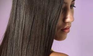 SHSalon: Haircut and Style with Optional All-Over Color or Full or Partial Highlights at SHSalon (Up to 56% Off)