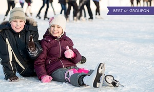 Planet Ice Basingstoke: Skate Hire and Entry for Up to Four to Planet Ice (Up to 33% Off)