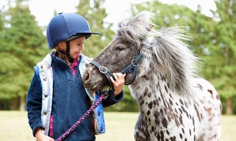 Paseo en poni para 1 o 2 niños desde 8,99 € en L'Escola Pony Club Granja