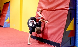 Cage Gymnastics: One or Two Months of Ninja Classes at Cage Gymnastics (Up to 51% Off)