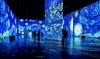 Imagine Van Gogh - Up to 25% Off Immersive Art Exhibition