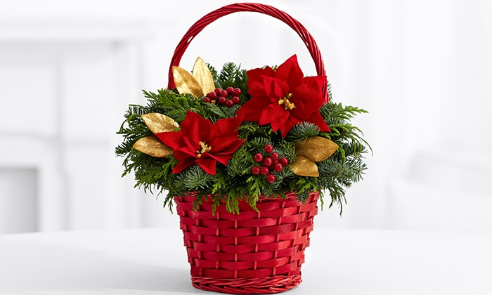 37% Off Poinsettia Basket from ProFlowers & Poinsettia Holiday Gift Basket | Groupon Goods