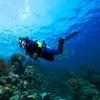 25% Off Snorkeling