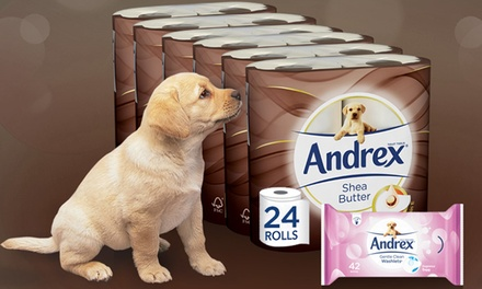 Andrex Toilet Paper Rolls from £9.98
