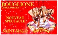 1 place pour enfant ou adulte, catégorie et date au choix pour la Tournée 2017 du cirque dhiver Bouglionedès 10 €