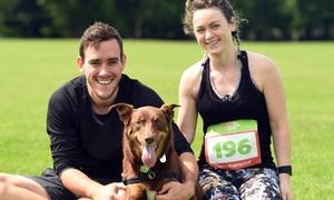 Dog Jog: Dog Jog, 15 July - 29 October, Multiple Locations (Up to 38% Off)