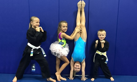 $39 for One Month of Choice of Recreational Class for One Child at Premier Gymnastics ($77 Value)