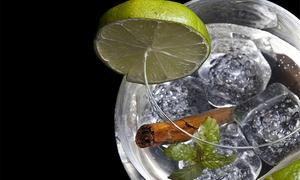 Ke Magdalenas: Curso de gin tonics con maridaje y cata de ginebras para una o dos personas desde 19,90 €