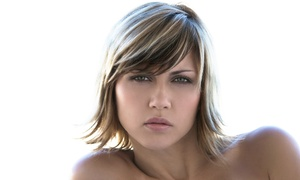 Studio 4 Salon: Haircut and Conditioning with Optional Full or Partial Highlights at Studio 4 Salon (Half Off)