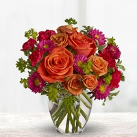 $40 Blooms Today Credit