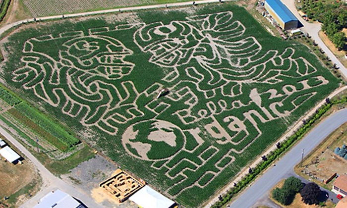 Bella Organic & Portland Pumpkin Farm - Sauvie Island: Corn Maze and Farm Activities at Bella Organic & Portland Pumpkin Farm (Up to Half Off). Three Options Available.