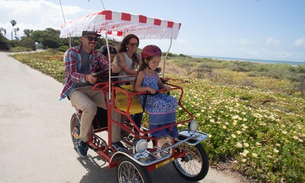 Bike Rentals from Wheel Fun Rentals (63% Off). Two Options Available.