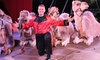 Garden Bros. Circus - Arizona Veterans Memorial Coliseum: Garden Bros. Circus for Two Adults and Two Children on Sunday, July 2 at 1 p.m., 3:30 p.m., or 6 p.m.