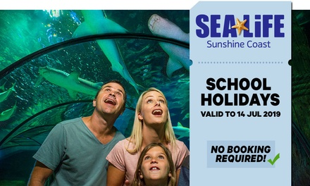 SEA LIFE Sunshine Coast: Child $25.20 or Adult $36 Entry