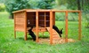 Prevue Pet Products Rabbit Hutch and Extension Playpen: Prevue Pet Products Rabbit Hutch and Extension Playpen