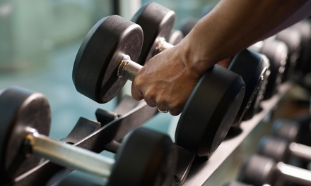 10 Gym Visits from Edwardsburg Fitness Co. (65% Off)