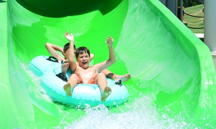 Things To Do With Kids Near Me Kids Activities Nearby Groupon