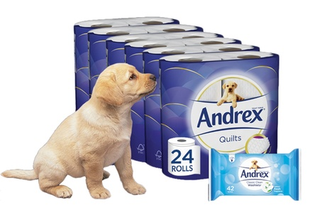 24 £9.98, 48 £19.99, 96 £38.99 Rolls of Andrex Toilet Paper with Washlets £11.99 £43.99
