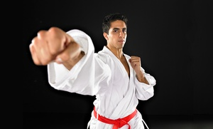 Neves Karate Academy: Five Karate Classes or One or Three Months of Karate Classes at Neves Karate Academy (Up to 75% Off)