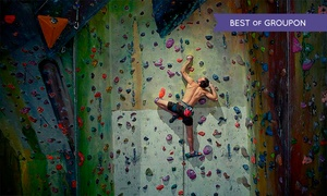 Undercover Rock Ltd: Indoor Climbing Session from £7.95 at Undercover Rock