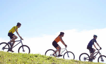 $25 for $50 Toward a Standard Bike Tune Up