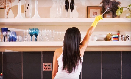 One 2-Hour Housecleaning Session - Time Saver Maids in