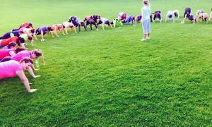 Real Bootcamp: Six-Week Bootcamp for Up to Four at Real Bootcamp, Templeogue (Up to 88% Off)