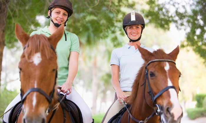 Glen Austin Stables - Johannesburg: One Hour Horse Riding Lesson at Glen Austin Stables