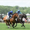Georgia Steeplechase & Spring Festival – Up to 37% Horse Race