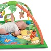 Fisher-Price Disney Baby Simba's King-Sized Play Gym