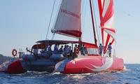 Sortie découverte de 2 heures au départ de Collioure pour 2 ou 4 personnes dès 39,99 € avec Catamaran Ciao