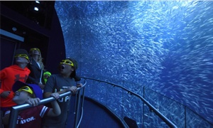 Up to 32% Off National Geographic Encounter: Ocean Odyssey at National Geographic Encounter: Ocean Odyssey, plus Up to 6.0% Cash Back from Ebates.