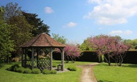 The Walled Garden Moreton: Entry and Afternoon Tea for Two or Four