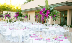 Events by Dina: $28 for $50 Groupon — Something Borrowed Party Rentals